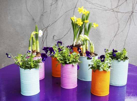 spring-gardening-hacks-airtasker-2