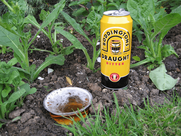 beer can slug repellant
