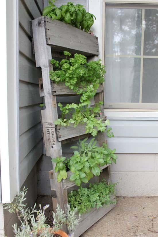 spring-gardening-hacks-airtasker-7