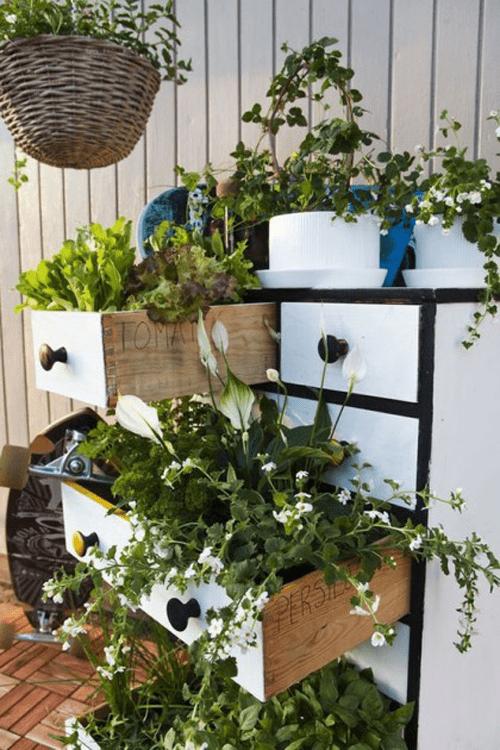 spring-gardening-hacks-airtasker-8
