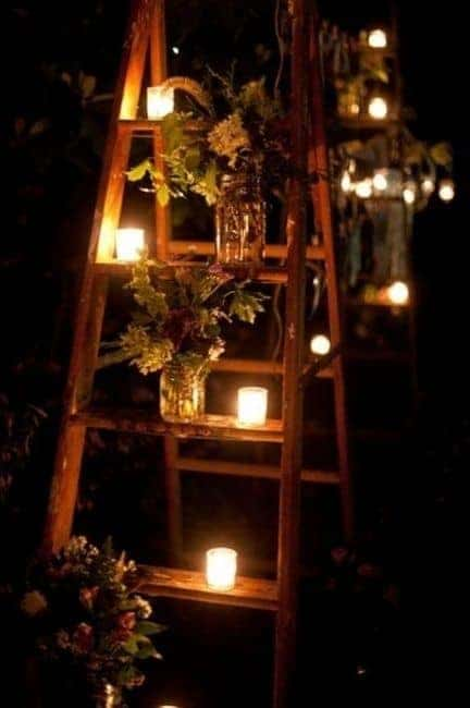 quirky gardening ideas ladder