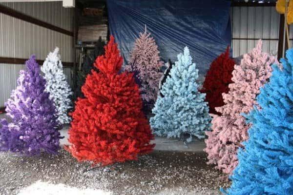 Non Traditional Christmas Tree Ideas.6 Non Traditional Christmas Tree Ideas Airtasker Blog