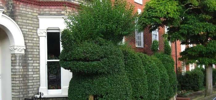 Ten Hilarious Garden Hedges