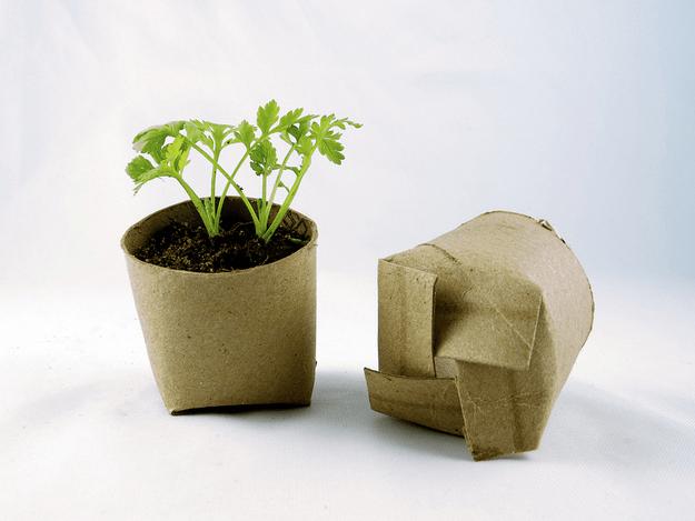 spring-gardening-hacks-airtasker-1