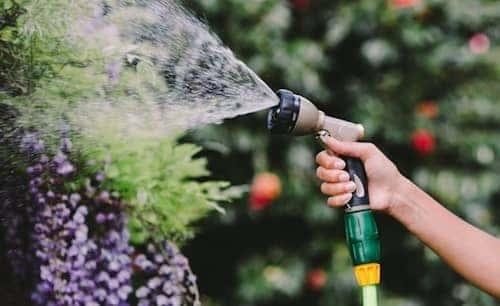 garden presents spray gun
