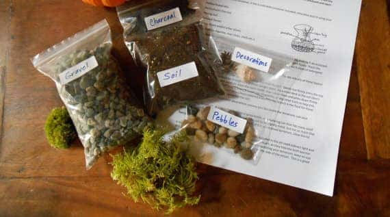 garden presents terrarium kit