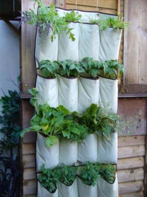 vertical garden hack