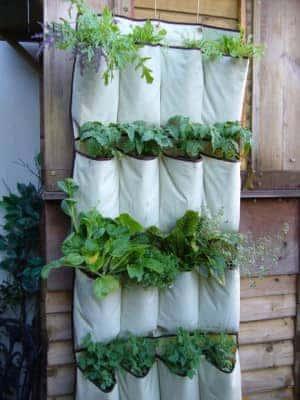 vertical garden hack