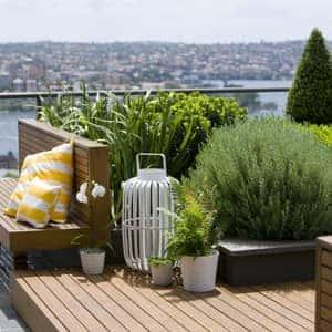 small garden - roof