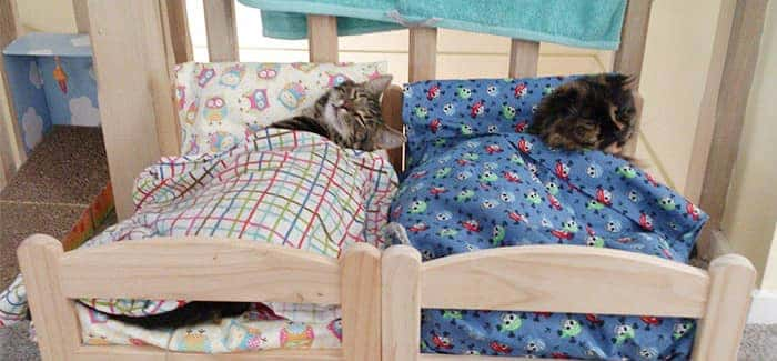 ikea-duktig-bed-hack-cat-bed-18