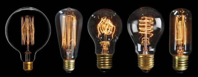 cat-bulbs-large-770x300