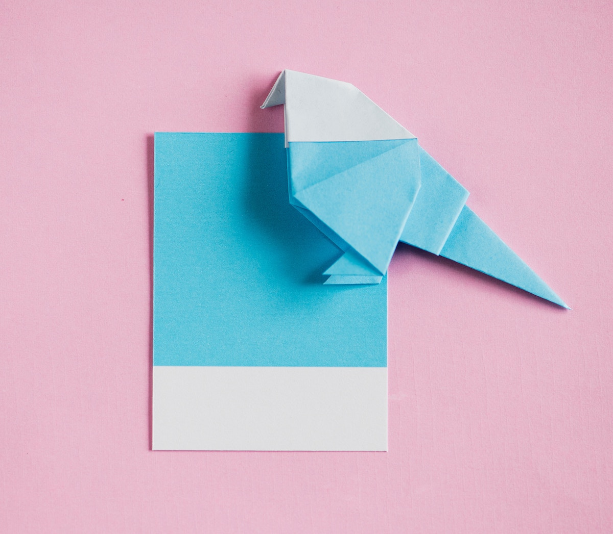 paper invitation origami bird