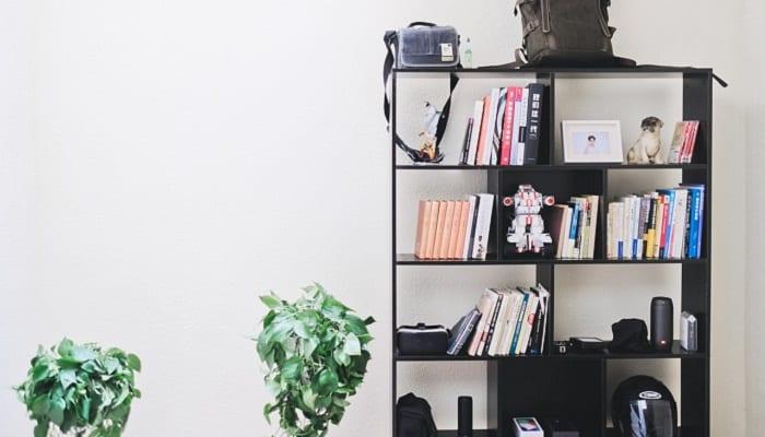 Cabinet maker bookshelf