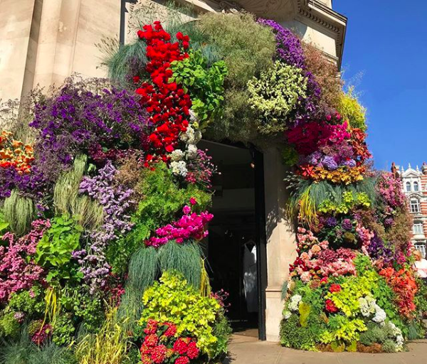 Floral Archway from Rag&Bone