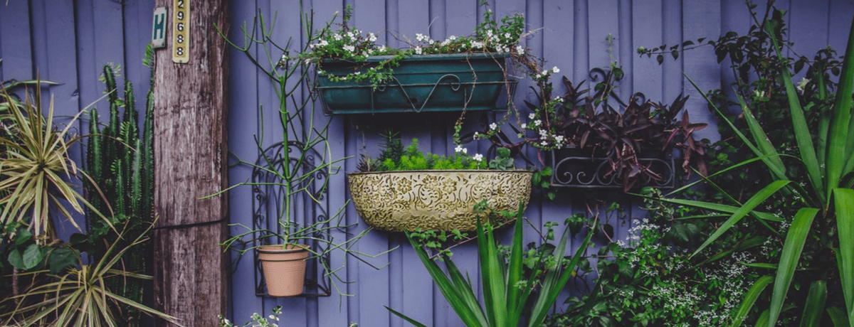 9 Gardening accounts you need to be following