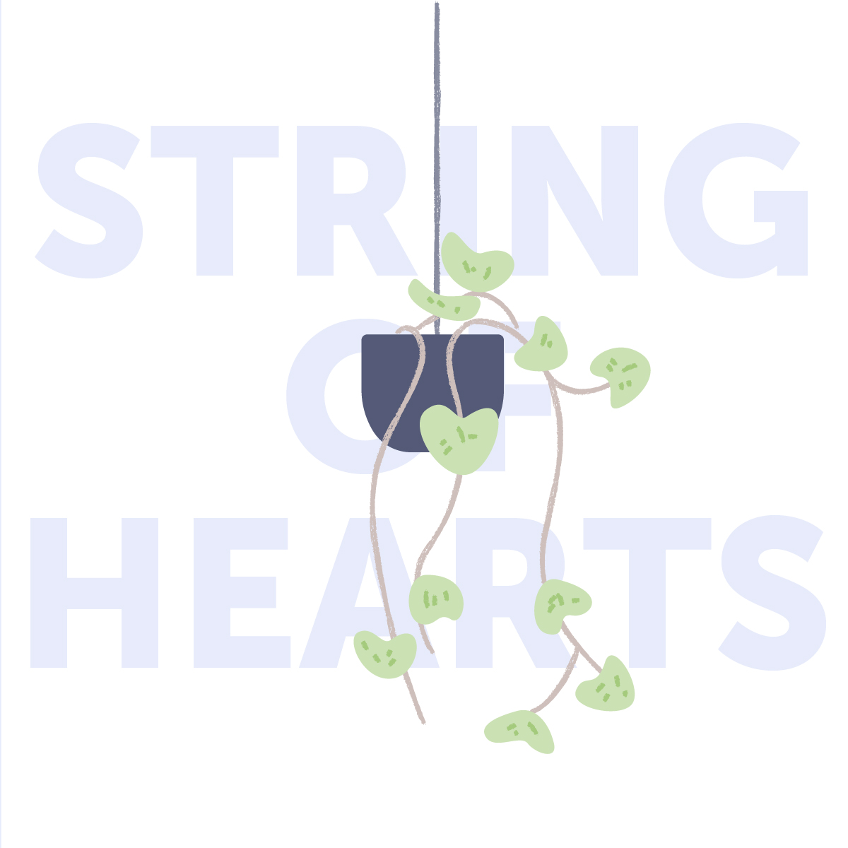 String of hearts indoor plant