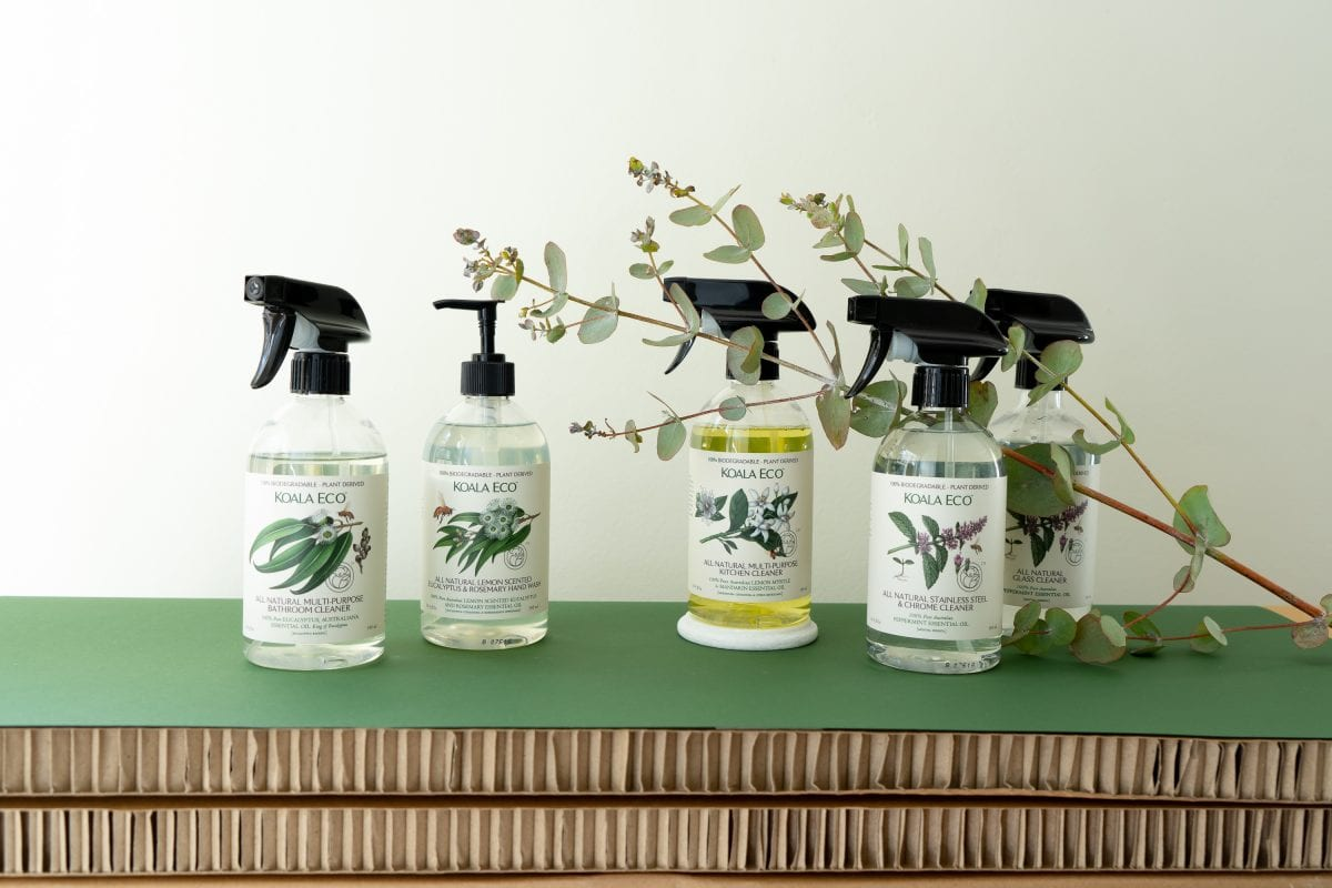 These eco friendly cleaning products are under $10, and they work