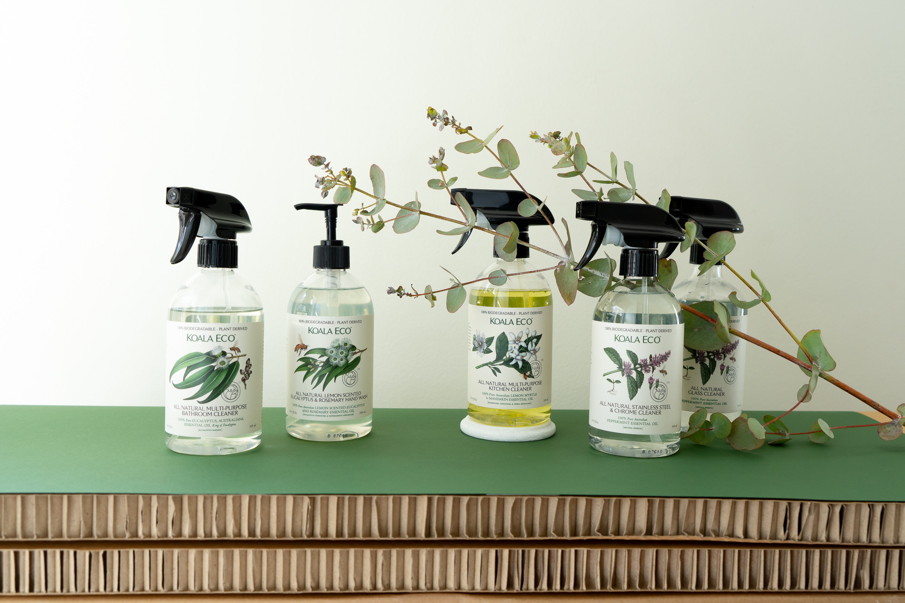 These eco friendly cleaning products