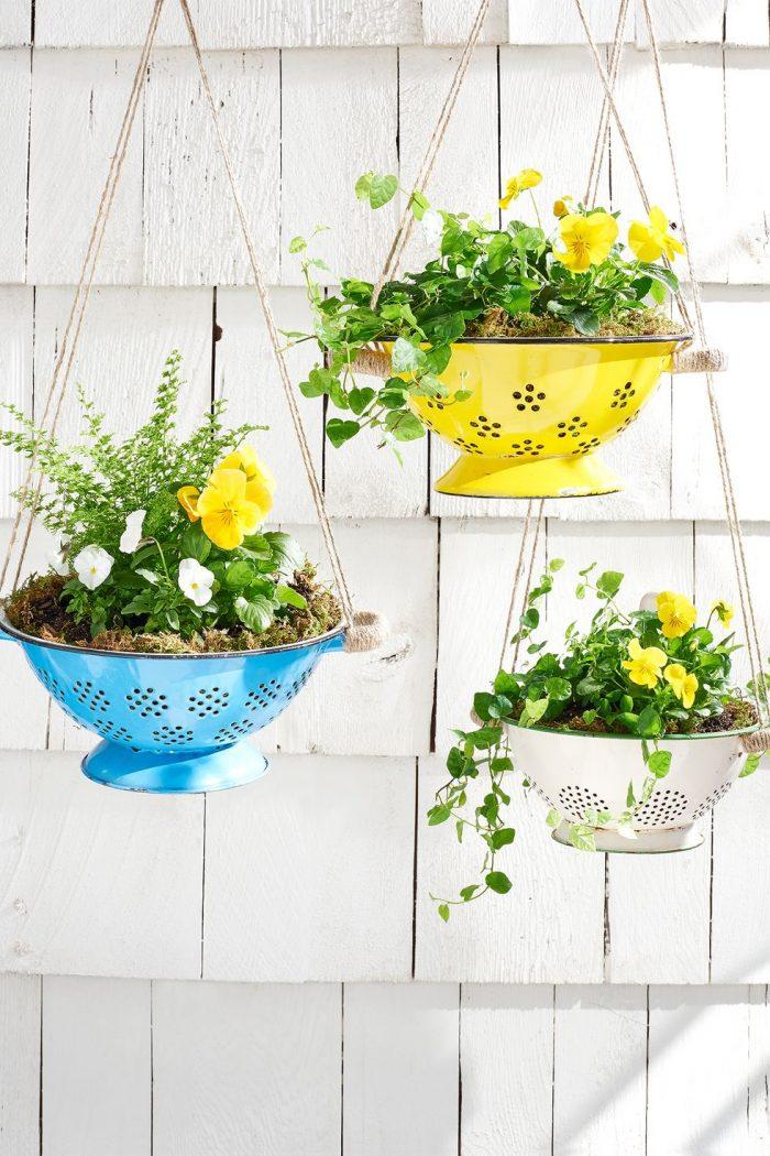 DIY colander hanging plants