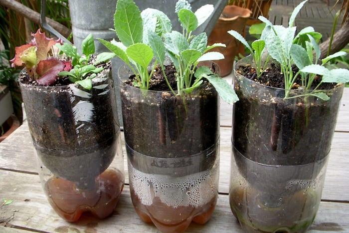 backyard-ideas-diy-irrigation-hack