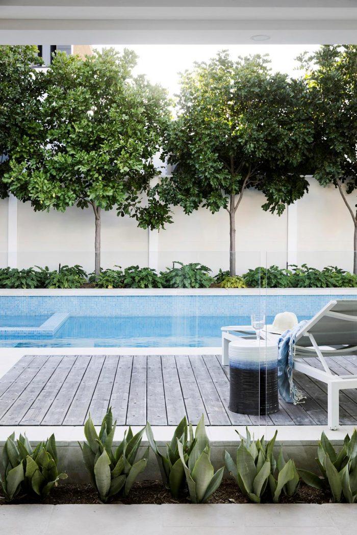 backyard-ideas-pool-fence-glass