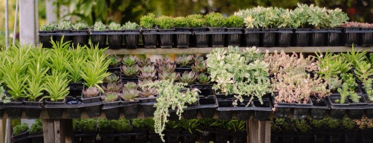 75 Backyard ideas for your home – backyard landscaping ideas, small backyard ideas