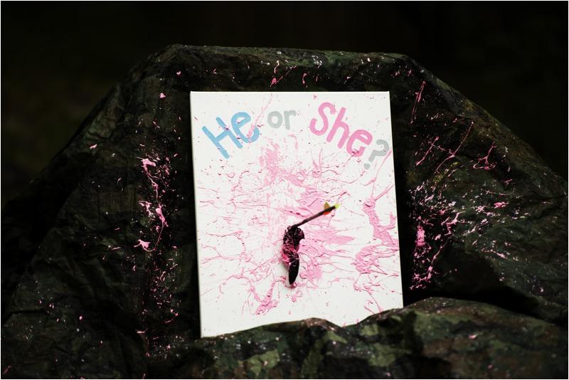 archery_balloon_paint_gender_reveal