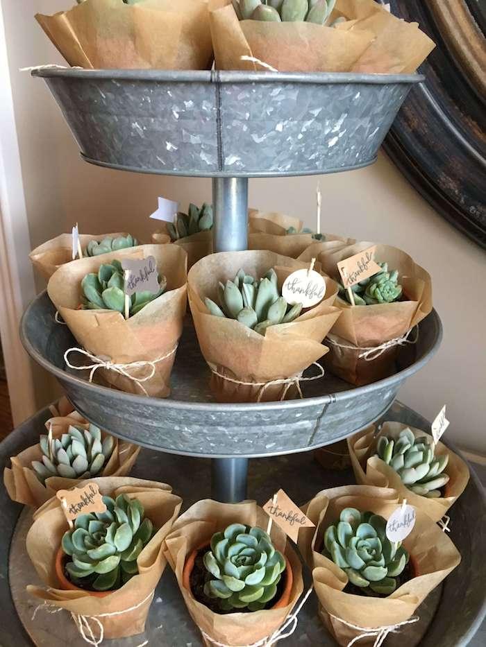 cactus party favour