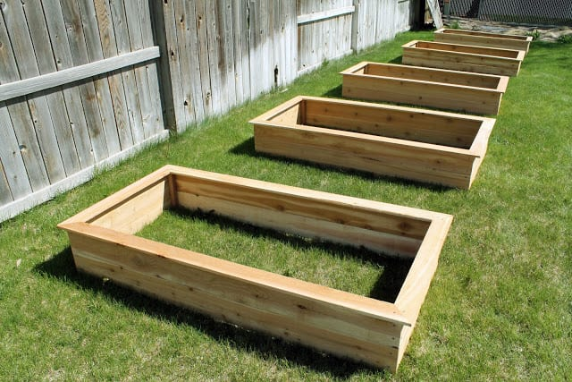 redwood raised beds