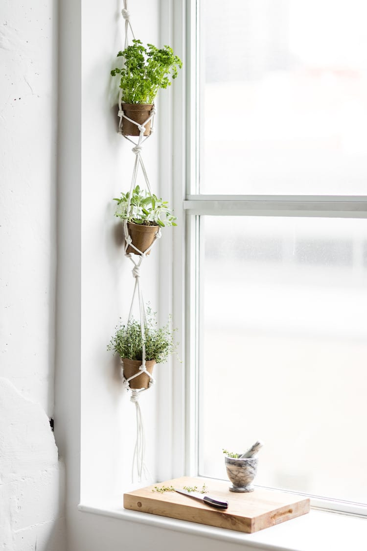 small herbs