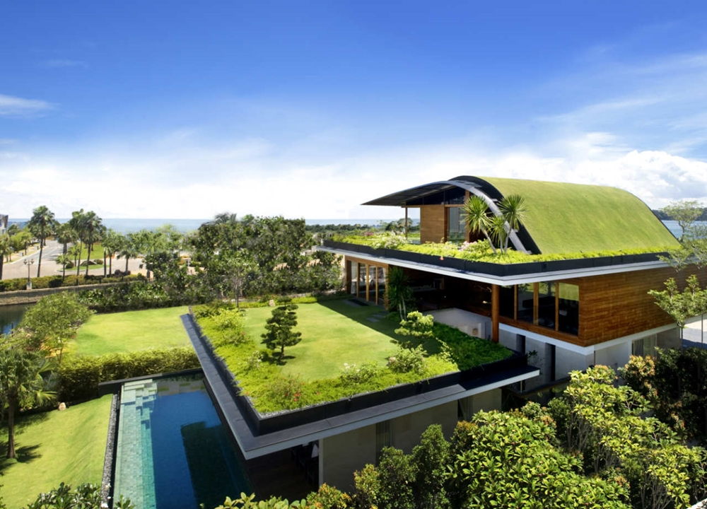 Green roof house
