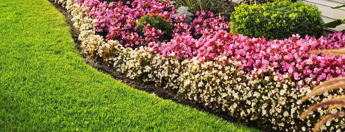 50+ Great garden edging ideas for your backyard