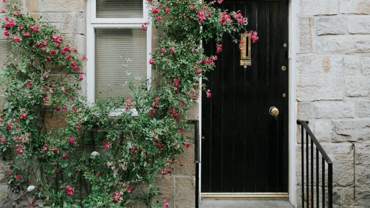 40+ Fabulous front garden ideas – low maintenance, small garden and budget design