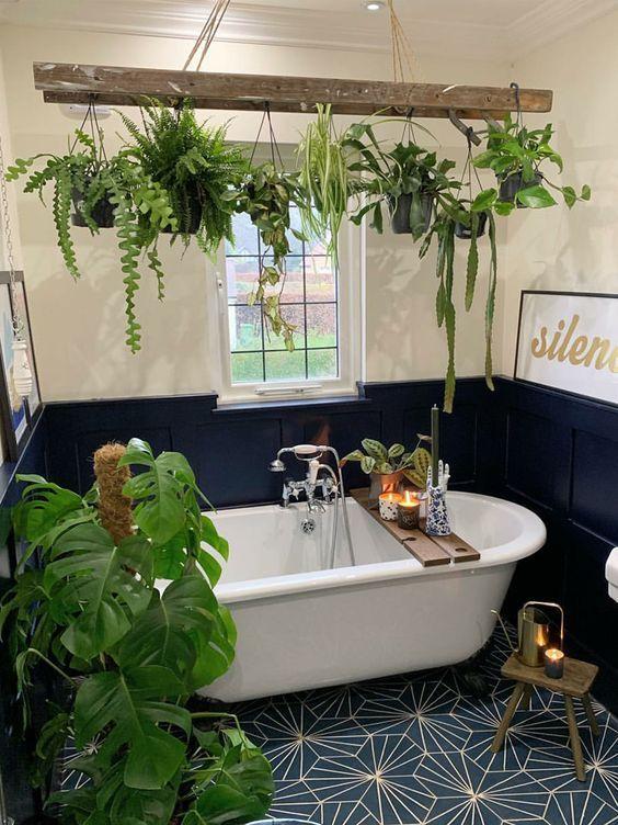 bath plant ladder