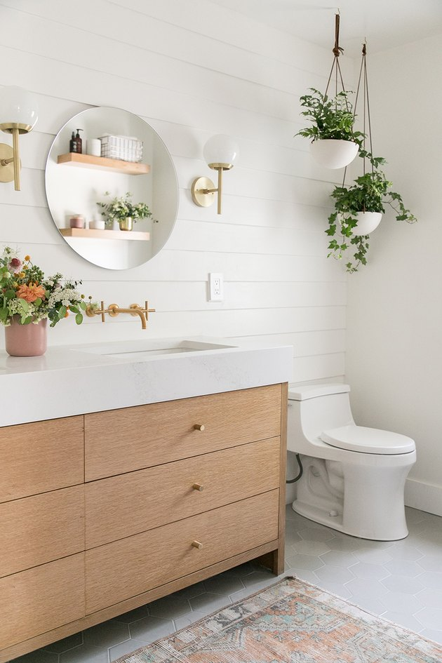 35 Bathroom Plants For You Indoor And Hanging Plants