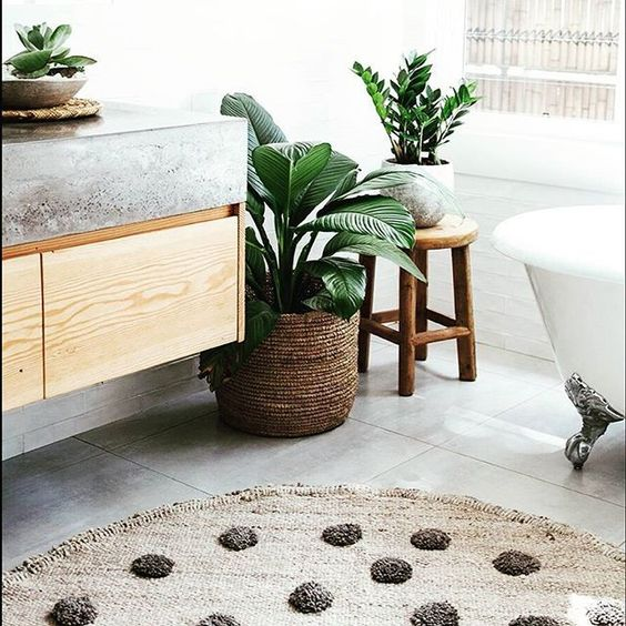 pretty bathroom plants