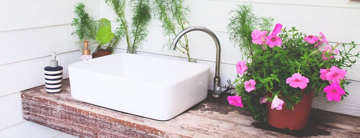 The best indoor and hanging bathroom plants