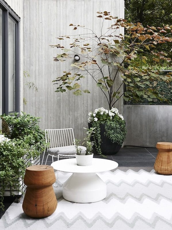 white and timber courtyard garden