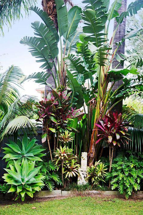 Balinese inspired tropical garden design