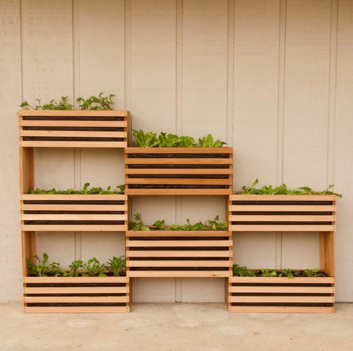 Timber boxes