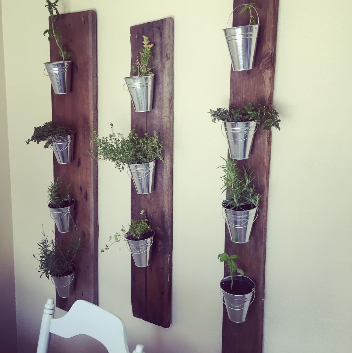 Herbs on timber
