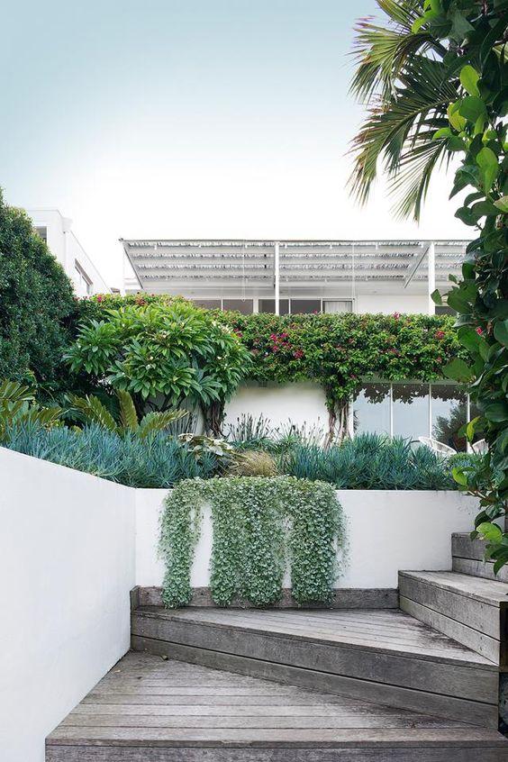 coastal terraced front garden