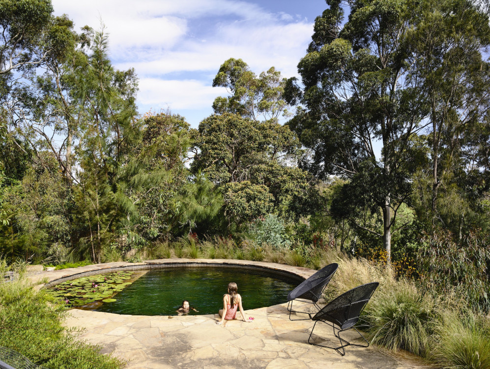 fairfield poolscape surrounded by native garden