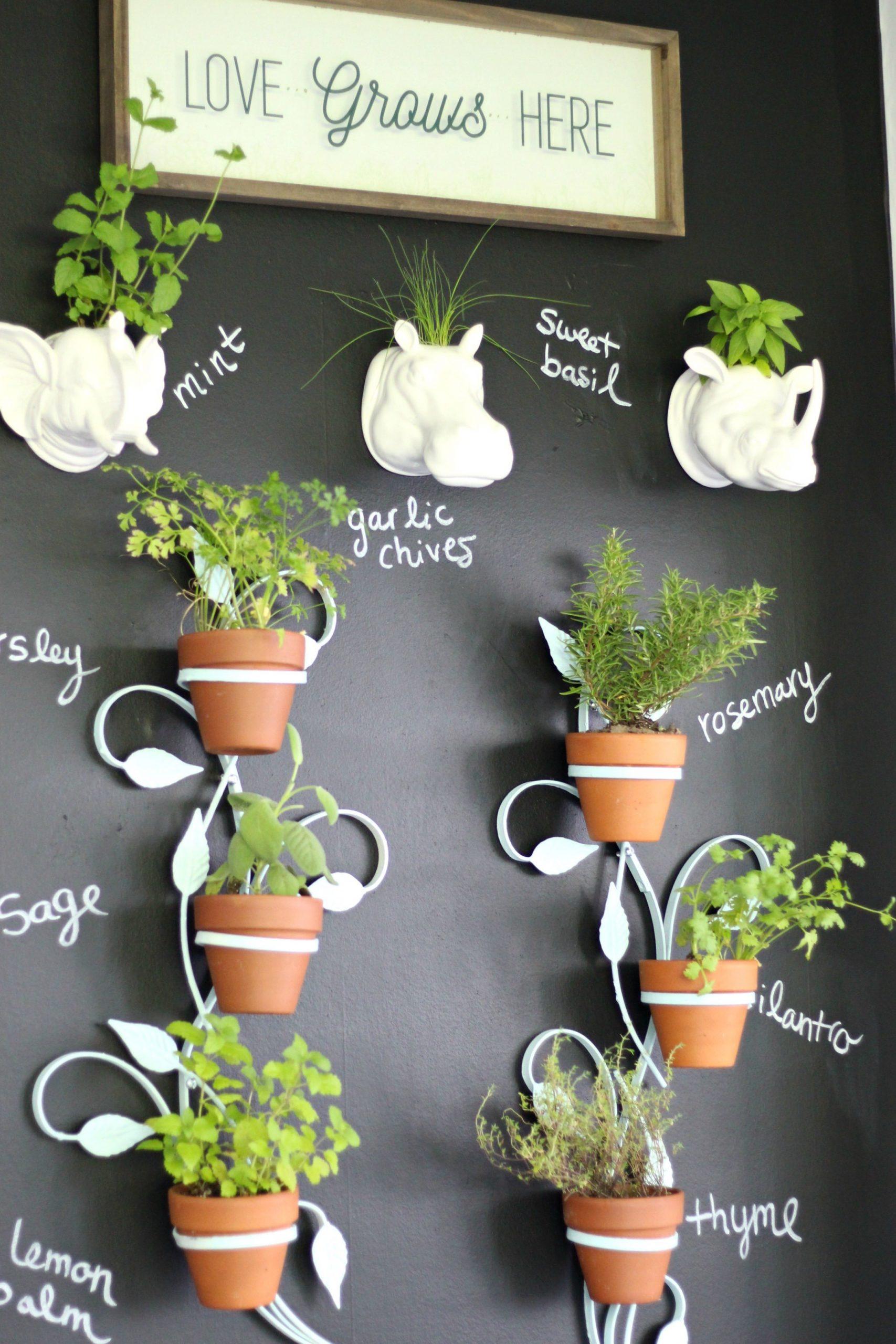 Pots on a board