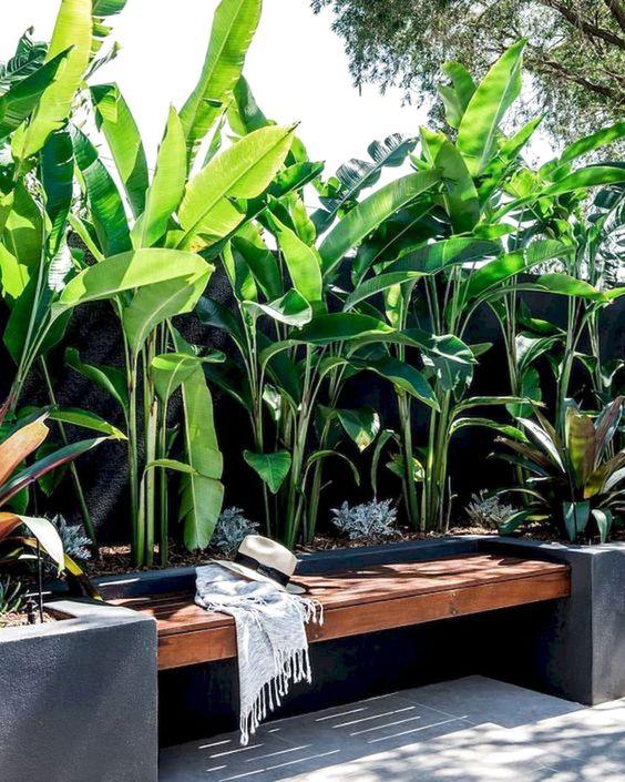 relaxing bench in tropical garden design
