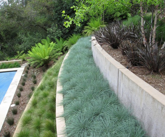 structure and order of a terraced garden