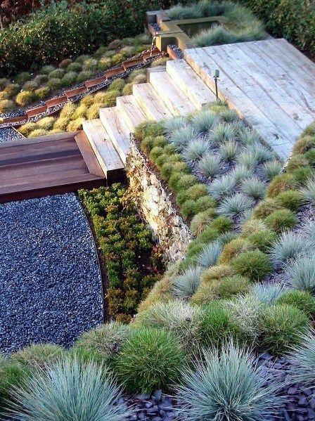 succulent terraced garden