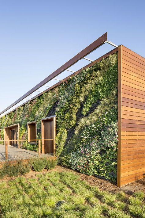 building wall vertical garden