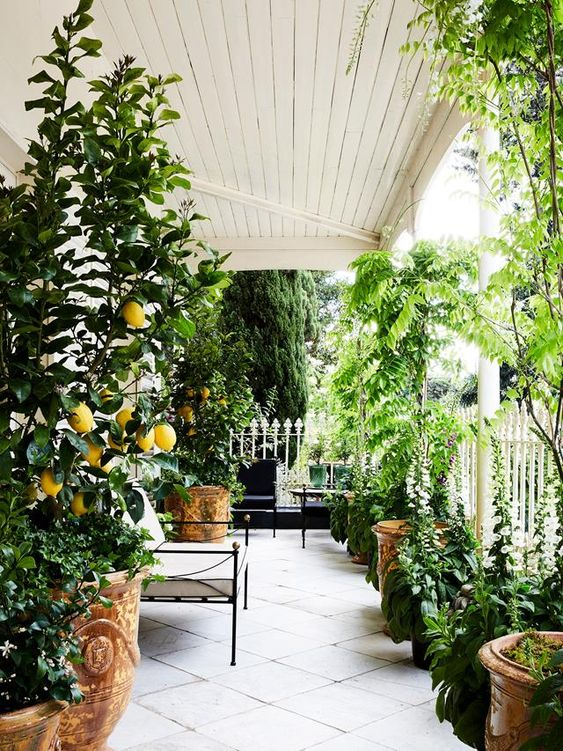 verandah ideas - fill with containers