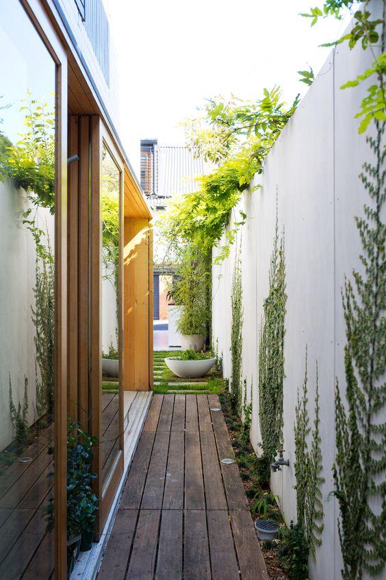 glimpse of backyard